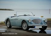 austin healey 100/4 for sale